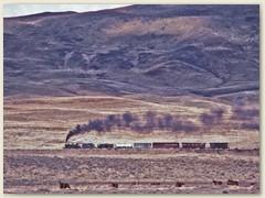 10 Die Weite der Landschaft. Patagonien ist sehr dünn besiedelt