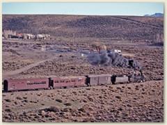 29 Die ersten Häuser von Esquel - Hier endet der Patagonien Express im Jahr 1993