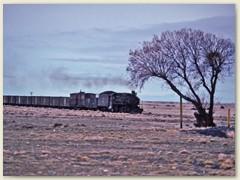 11 Ausser der Bahnlinie führt nur noch eine Schotterpiste von Rio Gallegos hinauf nach El Turbio