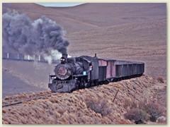 28 Eine alte Lok, für ihre Erhaltung wurde 1993 fast nichts mehr getan