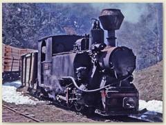 16 Die Lok bringt die mit Holzbretter beladenen Wagen von Comandău zur Bergstation