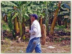 39_Arbeiter in El Progreso auf einer Bananenplantage
