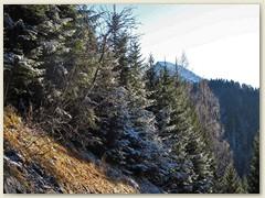 57 Mitte Dezember. Im Hintergrund Pala da Tgiern 2205 m
