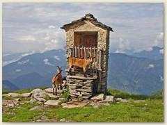 25_Im Verlauf einer Woche verarbeitet Pietro die Ziegenmilch zu rund 70 Kilo Käse