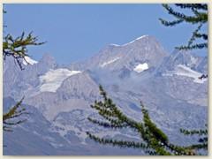 33_Das imposante Nesthorn liegt im Kanton Wallis in den südlichen Berner Alpen. Diesen Gipfel bestieg ich am 19. August 1995