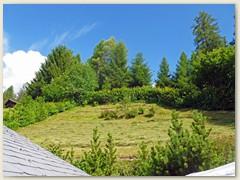 20_7. Juli, das Gras wird langsam zu Heu