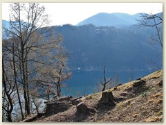 11_Oft ein Blick auf den westlichen Arm des Lago di Lugano mit den ausgedehnten Kastanienwälder