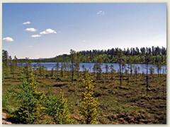 44_Nadelwald, Seen und Flüsse