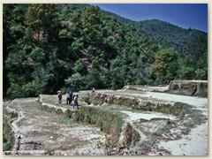 12 Die Wanderung geht weiter Richtung Sheopuri Lekh