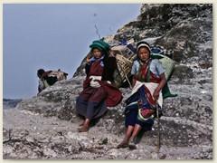 43 Unsere schönen Sherpanis in farbenfrohen Kleider