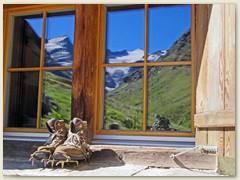 19_Hüttenidylle - Das Güferhorn und Rheinwaldhorn spiegeln sich im Hüttenfenster