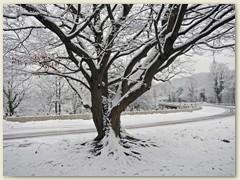 01_Januar 2018 - Standhaft dem Wetter trotzen
