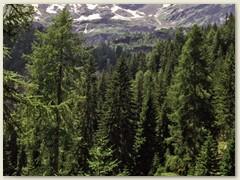 27_Blick zurück bei Prati Gera 1450 m im V. Piumogna