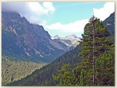 15_Das kleine Kohlbachtal ist ein 4.5 km langes terrassenförmiges Tal