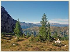 30_Etwas Grün auf dem Boganiweg Nr. 318. Im Hintergrund die Bernina Gipfel