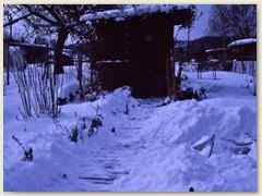 31r Winter 1985