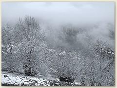 01_Januar 2016 - Schneearmer Monat