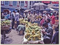24 Früchte- und Gemüsemarkt