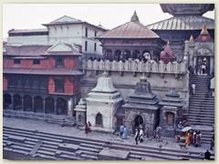 61 Am Bagmati befindet sich die Tempelanlage von Pashupatinath