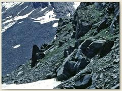 53 Letzter Blick zur Britanniahütte SAC
