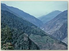62 Die grossen Schneeberge haben wir hinter uns gelassen. Auf schönem Hangweg durch Kieferwald geht es Bergab