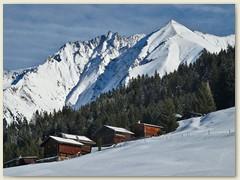 08 Auf der Alp Runca mit Piz Fes und Piz Signina