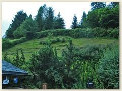 31 Im Juli, das Gras am Hang mit Trimmer gemäht