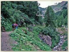 03 Im Vallon de Van, ein tief eingeschnittenes Seitental des Rhonetals