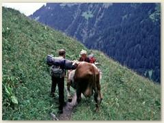 13 Alp Bonavau ist eine autofreie Alm