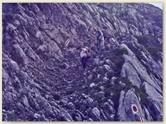 19 Hugo und Felix im Abstieg im Gemschtobel 2248 m