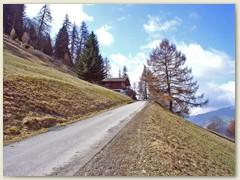13 Zufahrtsstrasse Richtung Alp Runca