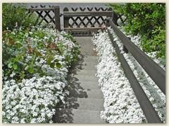24 Eingangstreppe von oben, Juni 2006