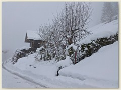 32 Wenn es schneit - im tiefsten Winter, März 2012